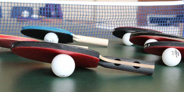 colección palas de ping pong