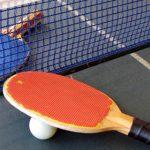 Palas de tenis de mesa