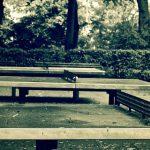 mesas de ping pong en parque público
