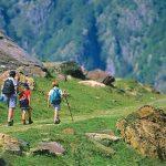 niños caminando por el monte